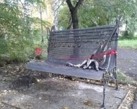 В Центральном парке установили скамейку в честь Михаила Горшенёва