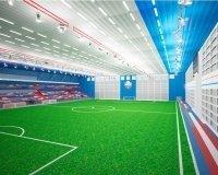 """Новый футбольный манеж назовут """"Футбол-Арена """"Енисей"""""""