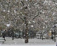 В ближайшие дни на Южном Урале обещают мокрый снег