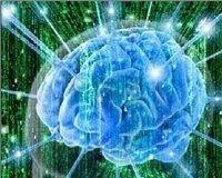 Мозг выносит суждения раньше, чем они появляются в сознании человека
