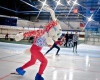 Выбран официальный талисман Чемпионата Европы по конькобежному спорту