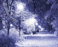Новый год мы встретим с искрящимся снегом и умеренным морозом!