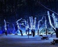 В Сургуте открыли архитектурно-художественно освещенный парк «Геологов»