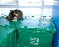 В Челябинске запустили сервис проката коробок для переезда