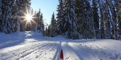 Уступите лыжню! Где в Челябинске кататься на лыжах