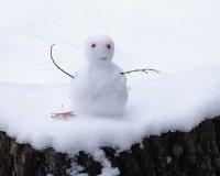 18 января - Всемирный день снега!