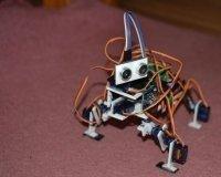 В Красноярске впервые представят уникального робота-собаку