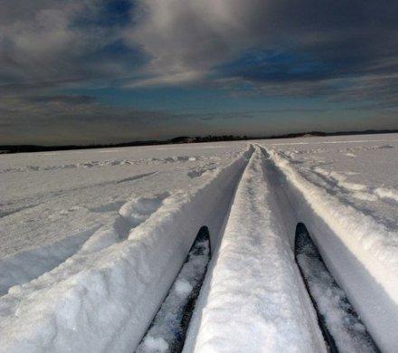 «Сургутская лыжня - 2015» стартует 8 фераля