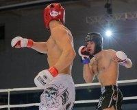 Чемпионат по смешанному боевому единоборству пройдет в Самаре
