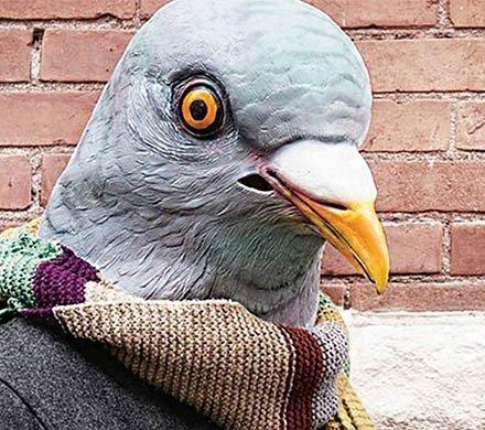 Где взять костюм животного  — Гид по городу 70a82d3938a01