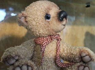 Целый город мишек Тедди приютила сургутская галерея