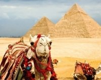 В Египте принимают к оплате рубли, но по интересному курсу