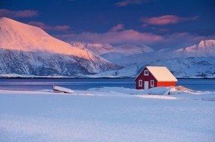 Арктика, Google, музей Metropolitan и Apple: где можно пройти стажировку этим летом