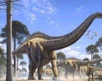 В Китае нашли останки динозавра, жившего 126 миллионов лет назад