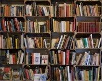 В Казани пройдет первая бесплатная книжная ярмарка
