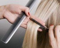 В Караганде бесплатно учат на парикмахеров-универсалов, косметологов-эстетистов и маникюрш