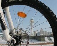 Общая протяженность построенных в городе велобанов составит 206 км