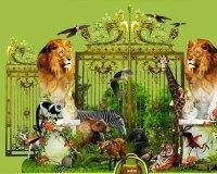 К 300му юбилею города власти планируют построить новый зоопарк
