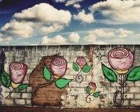 Флористы и райтеры объединятся для создания арт-объектов