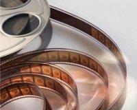 Мировой финал чемпионата спортивного кино и телевидения начнется 5 августа