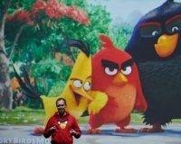 Вышла вторая часть игры Angry Birds