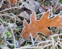 В Челябинской области в начале сентября будут минусовые температуры