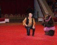 Большой московский цирк зверей пробудет в Караганде до конца этой недели