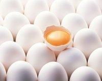 Шнобелевскую премию вручили за превращение вареных яиц в сырые