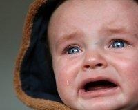 С 1 октября плата за детские сады в Красноярске выросла на 20%