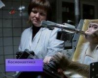 Ученые Российской академии наук готовят обезьян к полету на Марс