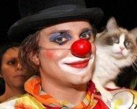 В Тольятти приедет шоу Куклачёва